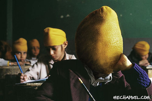 Click here to view 'Lemon-head'