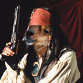 Click here to view 'txmx, alpaca pirate'